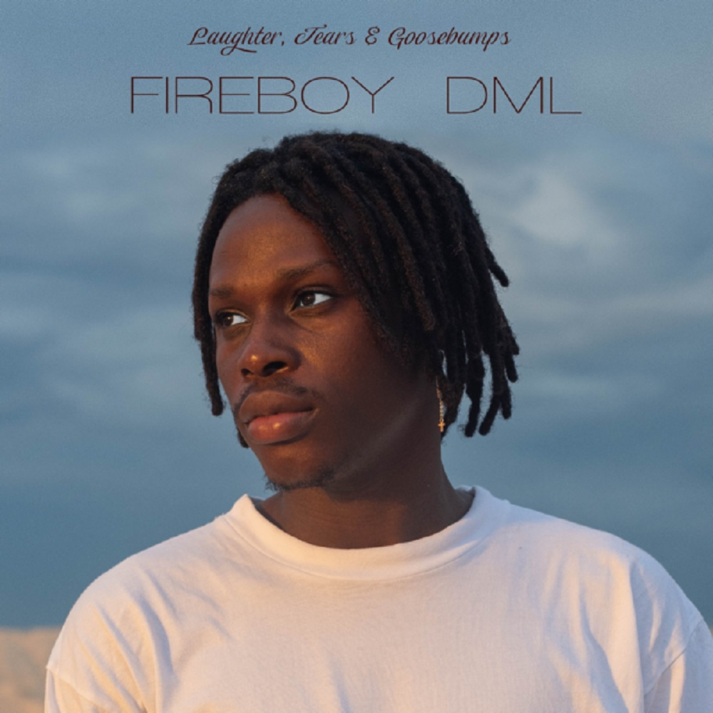 Fireboy DML Wait and See mP3